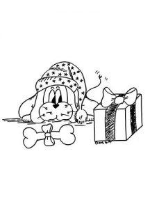 dadoll-pacco-regalo
